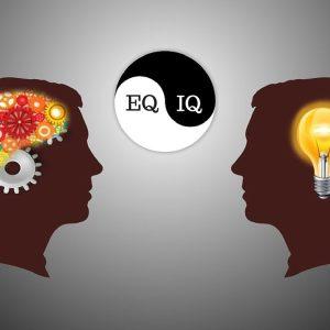 Эмоциональный интеллект руководителя- тренинг